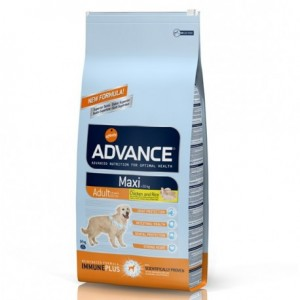 Advance Maxi Adult Chicken