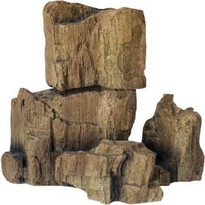Piedras FOSSIL