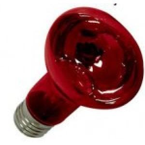 Copele Lampara Electrica