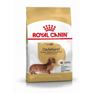 Royal Canin Dachshund (Teckel)
