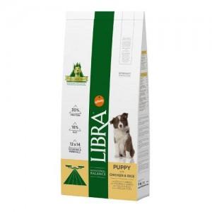 Libra Puppy