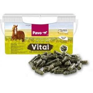 Pavo Vital + Portes