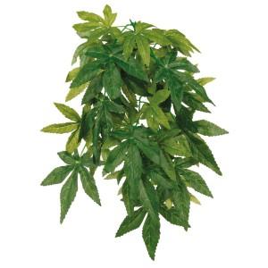 Planta Colgante Seda, Abutilón