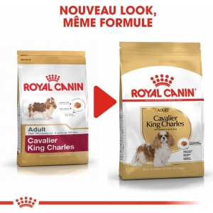 Royal Canin Cavalier King Charles 27