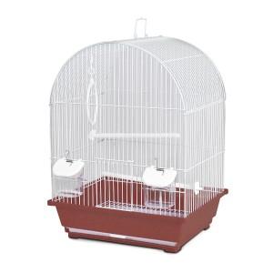 Jaula Pájaros Jamaica