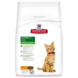 Hill's Kitten Healthy Development Pollo