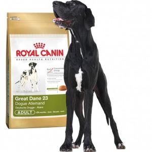 Royal Canin Great Dane 23