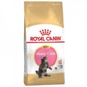 ROYAL CANIN KIITEN MAINE COON 36